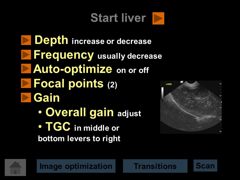 Start liver Image optimization Depth increase or decrease Frequency usually decrease Auto-optimize on or off Focal points (2) Gain Overall gain adjust TGC in middle or bottom levers to right Transitions Scan