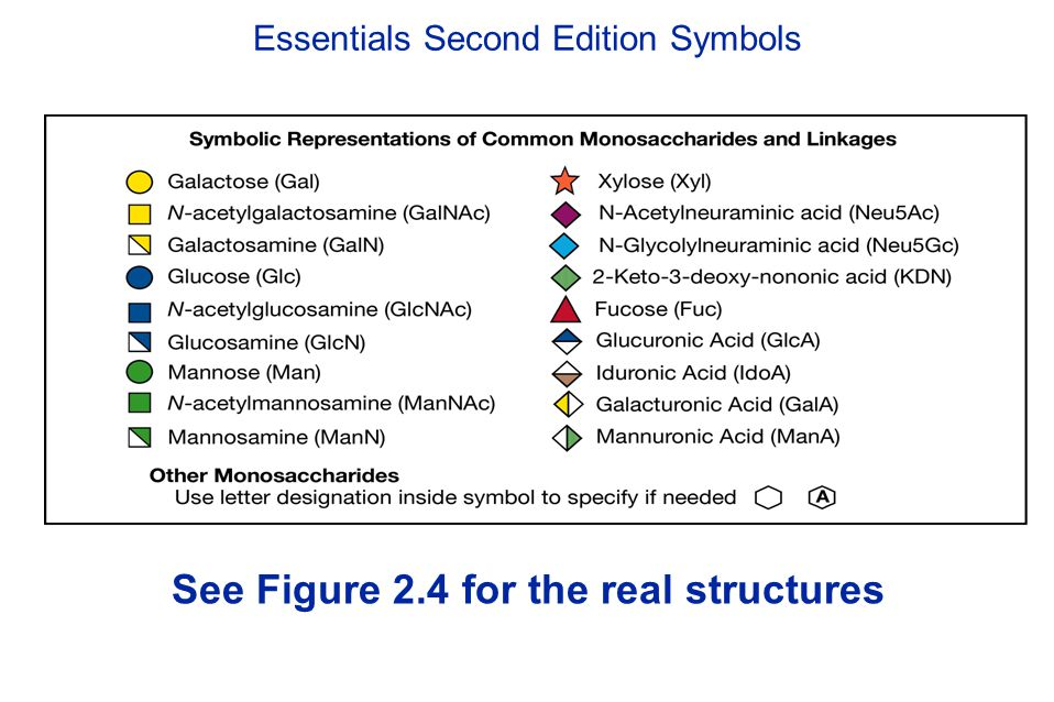 Essentials Second Edition Symbols See Figure 2.4 for the real structures