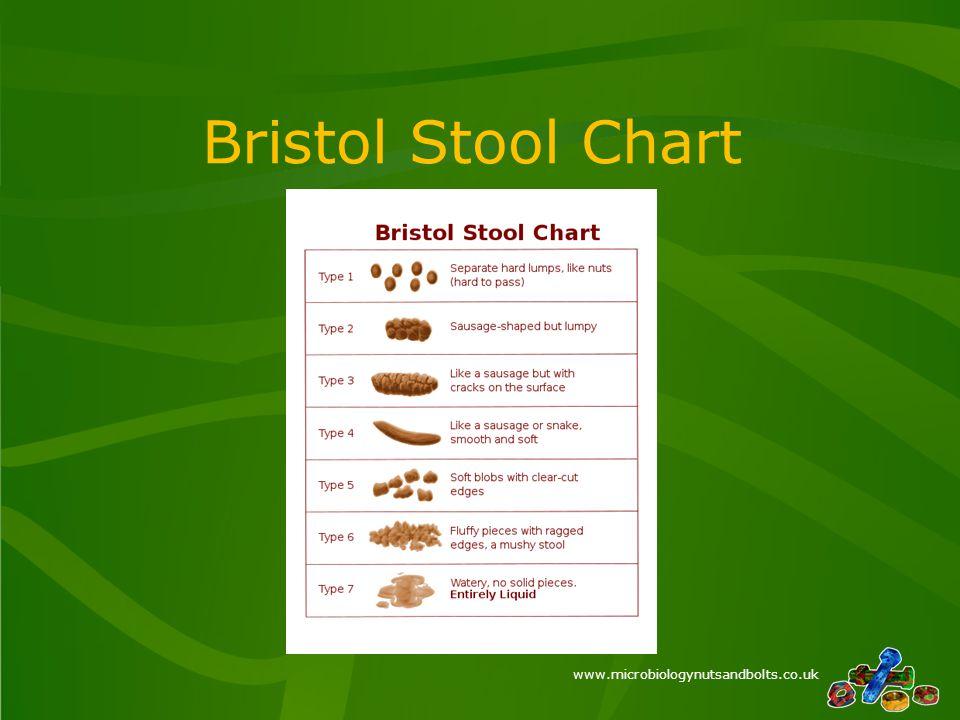www.microbiologynutsandbolts.co.uk Bristol Stool Chart