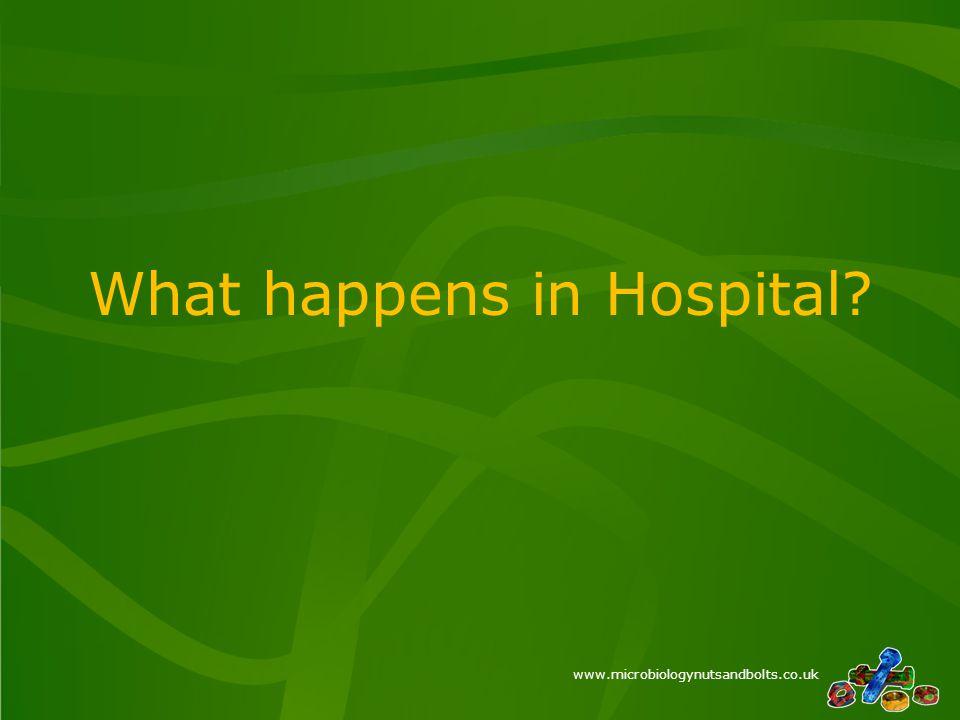 www.microbiologynutsandbolts.co.uk What happens in Hospital