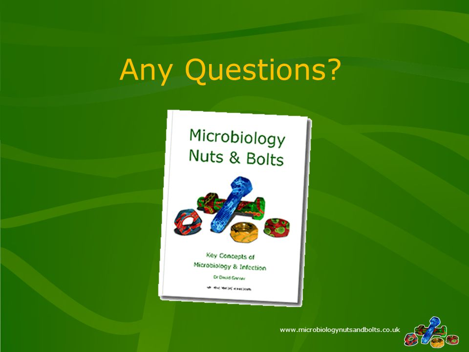www.microbiologynutsandbolts.co.uk Any Questions?