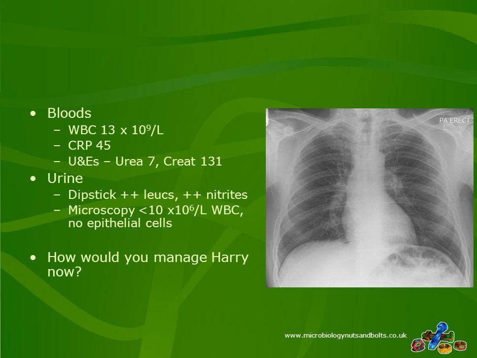www.microbiologynutsandbolts.co.uk Bloods –WBC 13 x 10 9 /L –CRP 45 –U&Es – Urea 7, Creat 131 Urine –Dipstick ++ leucs, ++ nitrites –Microscopy <10 x10 6 /L WBC, no epithelial cells How would you manage Harry now?