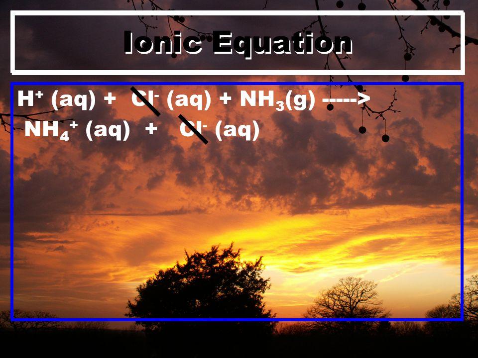 Ionic Equation H + (aq) + Cl - (aq) + NH 3 (g) -----> NH 4 + (aq) + Cl - (aq)