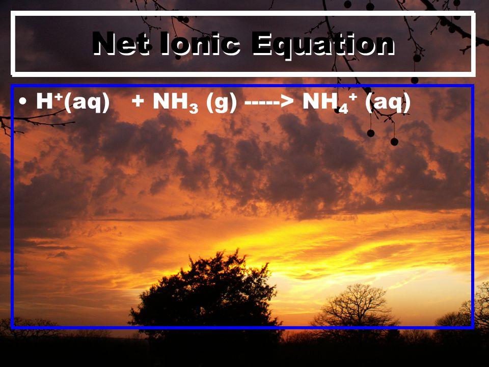 Net Ionic Equation H + (aq) + NH 3 (g) -----> NH 4 + (aq)