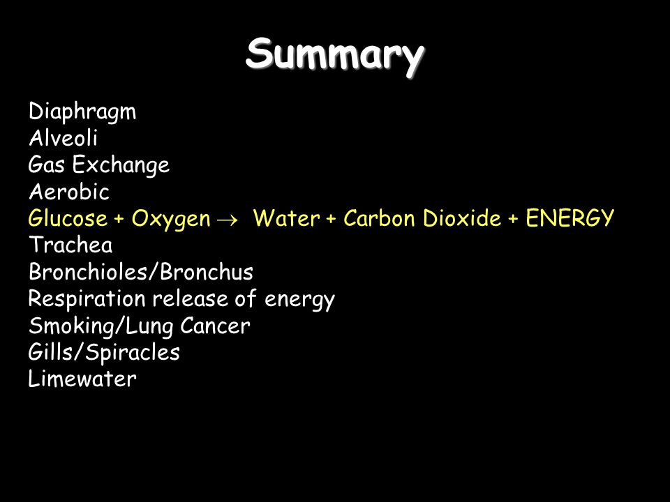 Summary Diaphragm Alveoli Gas Exchange Aerobic Glucose + Oxygen  Water + Carbon Dioxide + ENERGY Trachea Bronchioles/Bronchus Respiration release of energy Smoking/Lung Cancer Gills/Spiracles Limewater