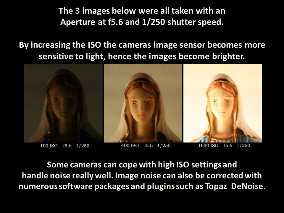 The 3 images below were all taken with an Aperture at f5.6 and 1/250 shutter speed. By increasing the ISO the cameras image sensor becomes more sensit