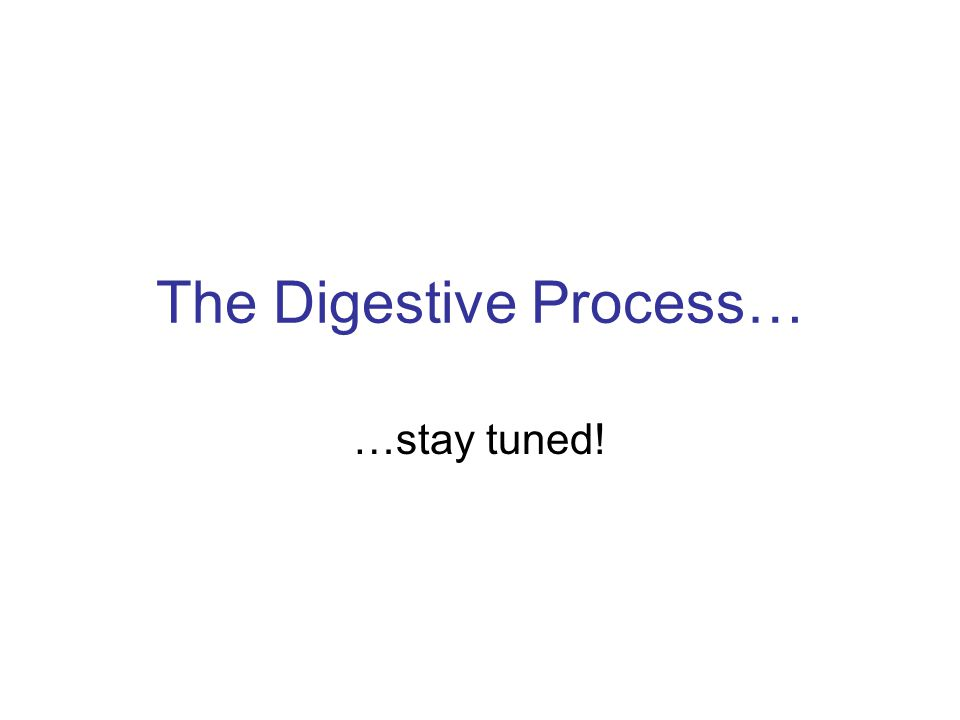 The Digestive Process… …stay tuned!