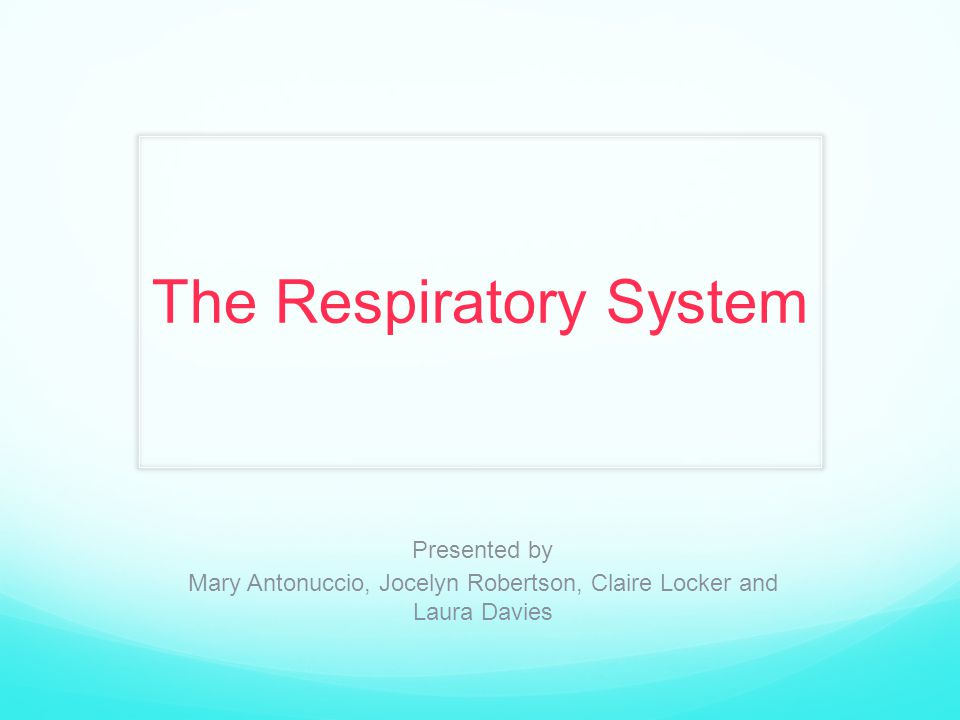 The Respiratory System Presented by Mary Antonuccio, Jocelyn Robertson, Claire Locker and Laura Davies