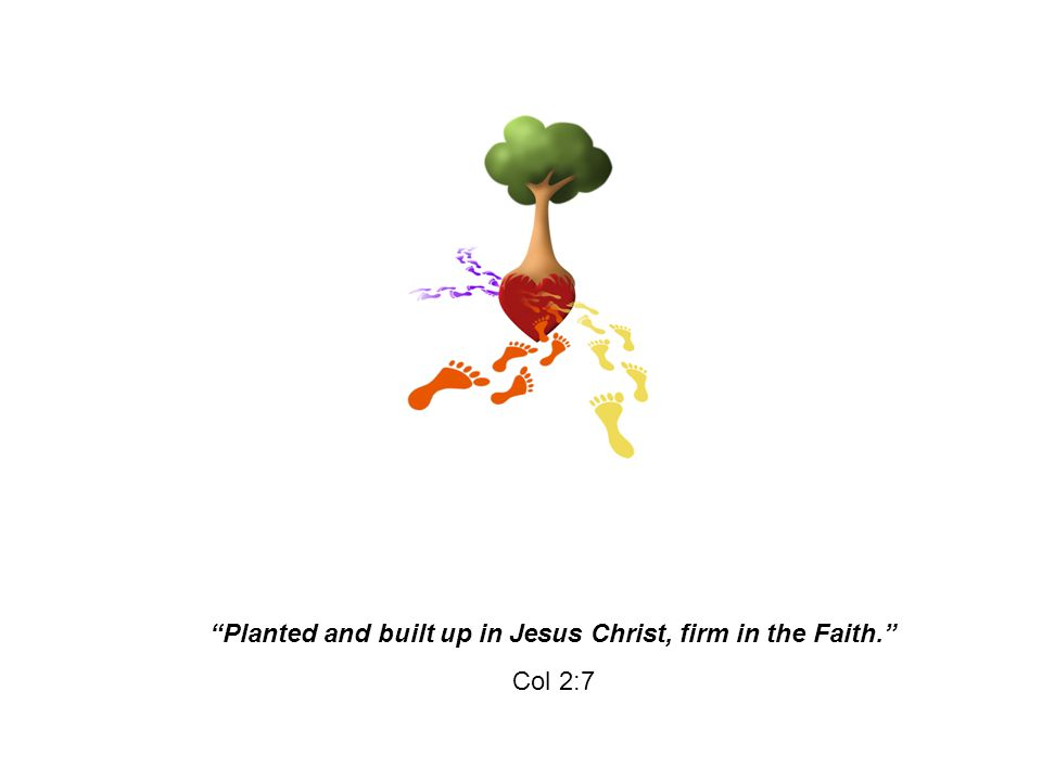 """""""Planted and built up in Jesus Christ, firm in the Faith."""" Col 2:7"""