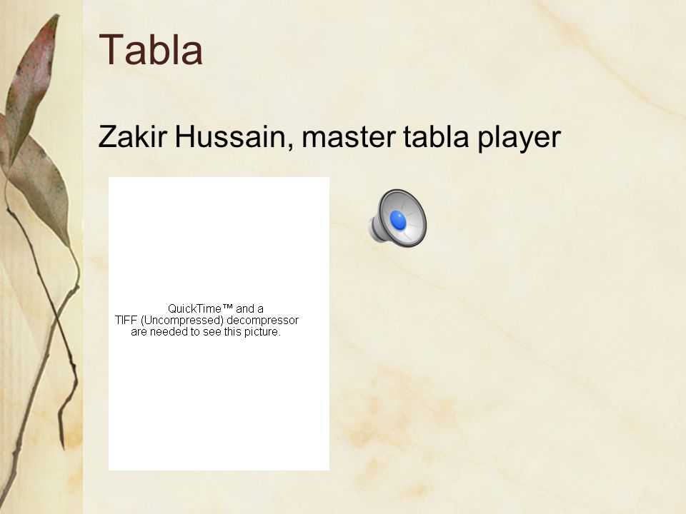 Tabla Zakir Hussain, master tabla player