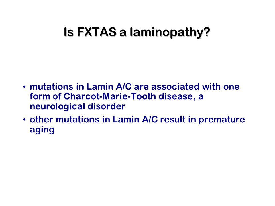 Is FXTAS a laminopathy? mutations in Lamin A/C are associated with one form of Charcot-Marie-Tooth disease, a neurological disorder other mutations in