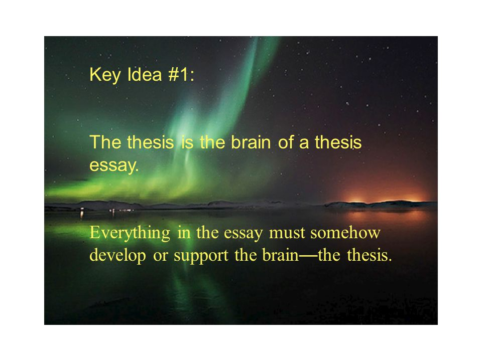 Key Idea #1: The thesis is the brain of a thesis essay. Everything in the essay must somehow develop or support the brain — the thesis.