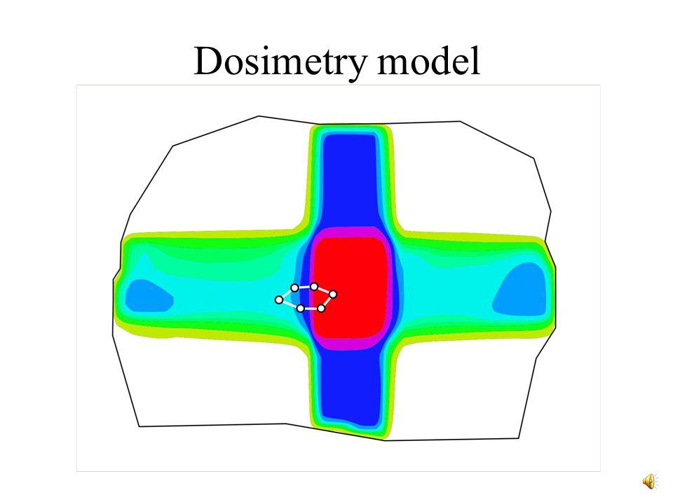 Dosimetry model