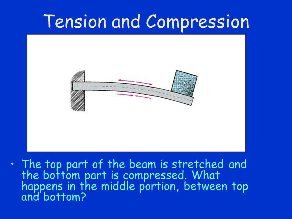 Tension and Compression The top part of the beam is stretched and the bottom part is compressed.