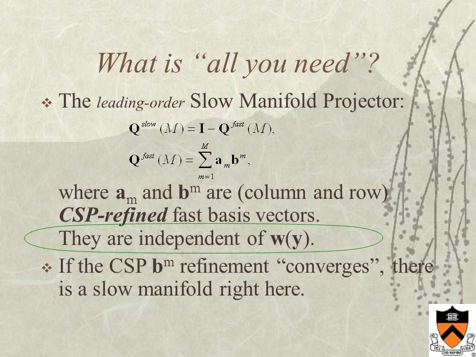 What the CSP-refined basis vectors tell you….