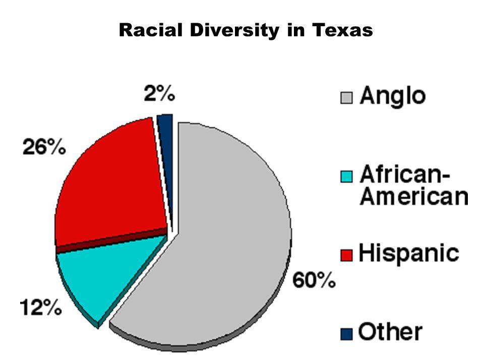 Racial Diversity in Texas