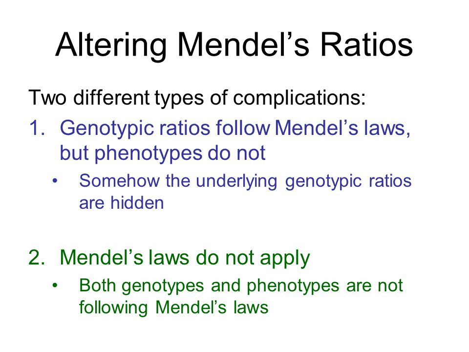 Altering Mendel's Ratios Two different types of complications: 1.Genotypic ratios follow Mendel's laws, but phenotypes do not Somehow the underlying g