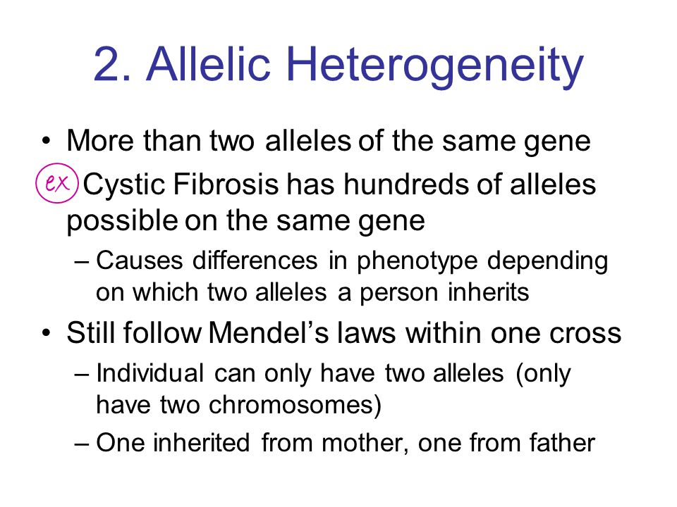 2. Allelic Heterogeneity More than two alleles of the same gene Cystic Fibrosis has hundreds of alleles possible on the same gene –Causes differences