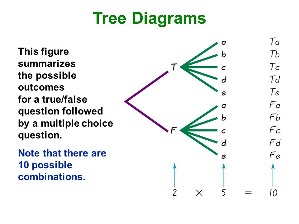 Tree Diagrams This figure summarizes the possible outcomes for a true/false question followed by a multiple choice question.