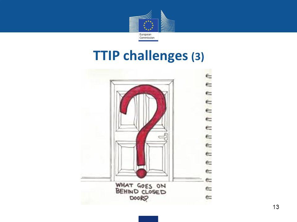 13 TTIP challenges (3)