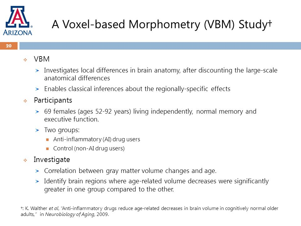 A Voxel-based Morphometry (VBM) Study† 20  VBM Investigates local differences in brain anatomy, after discounting the large-scale anatomical differences Enables classical inferences about the regionally-specific effects  Participants 69 females (ages 52-92 years) living independently, normal memory and executive function.