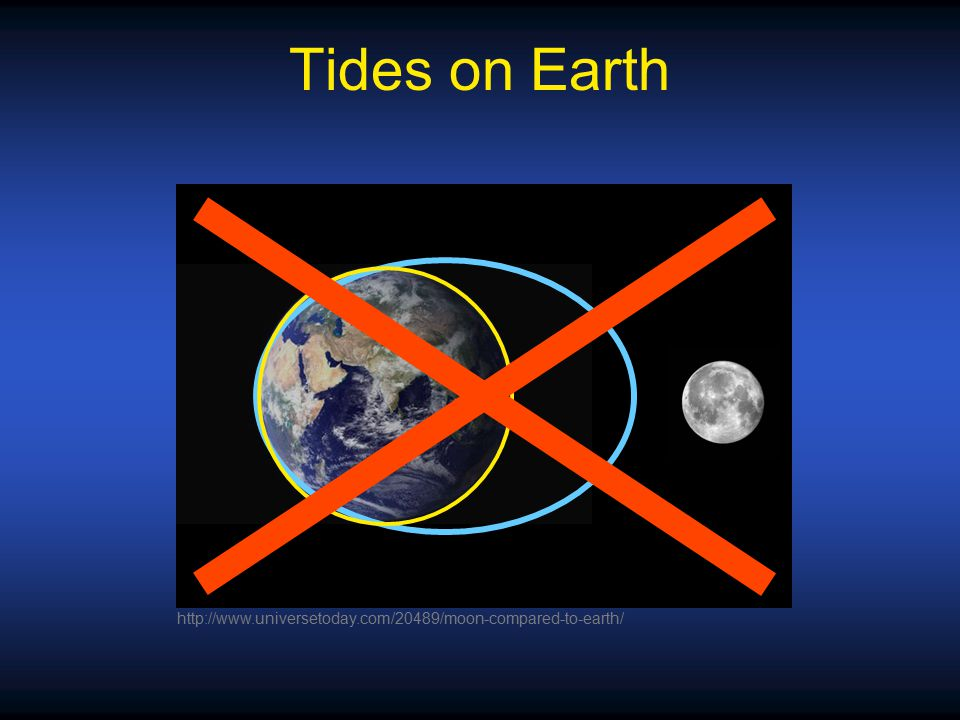 Tides on Earth http://www.universetoday.com/20489/moon-compared-to-earth/