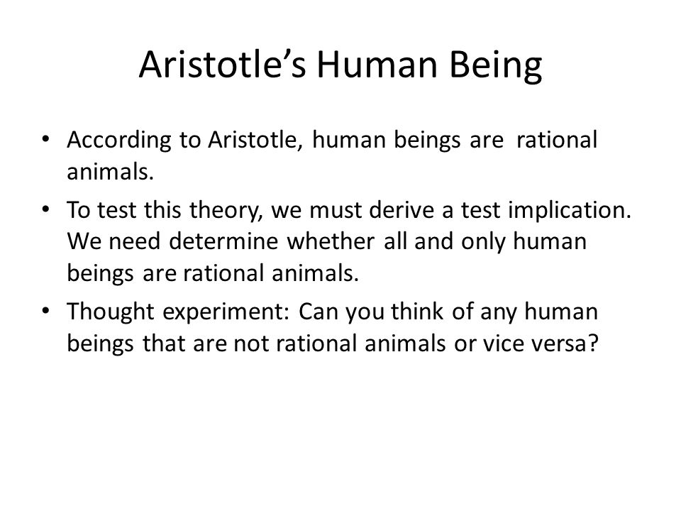 Aristotle's Human Being According to Aristotle, human beings are rational animals.