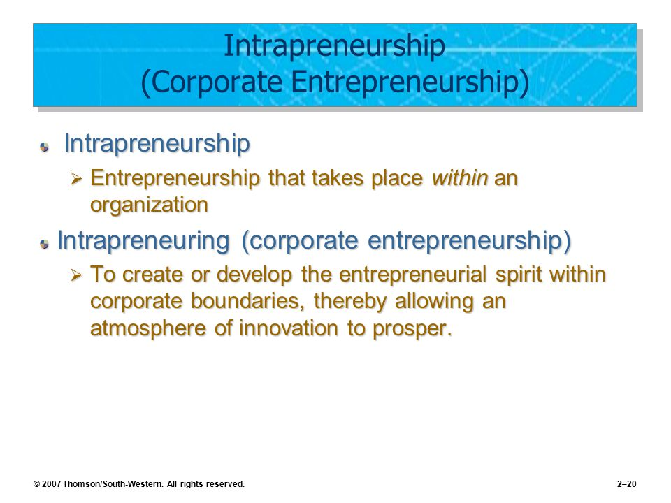 © 2007 Thomson/South-Western. All rights reserved.2–20 Intrapreneurship (Corporate Entrepreneurship) Intrapreneurship Intrapreneurship  Entrepreneurs