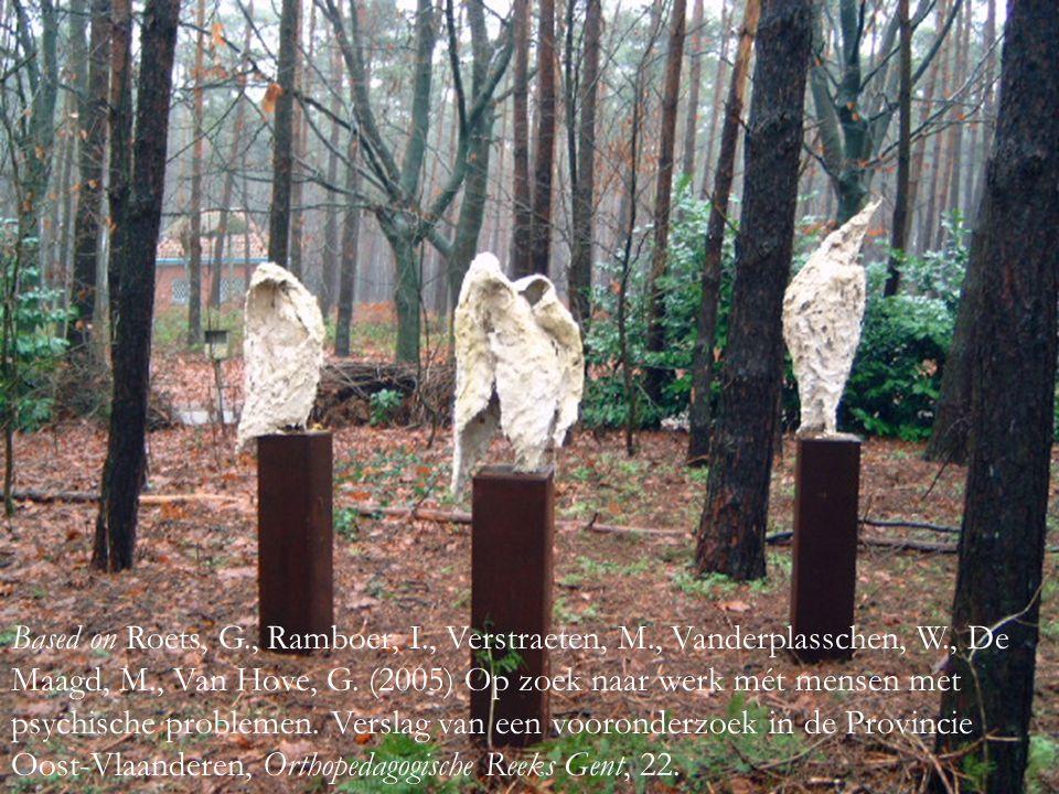 Based on Roets, G., Ramboer, I., Verstraeten, M., Vanderplasschen, W., De Maagd, M., Van Hove, G.