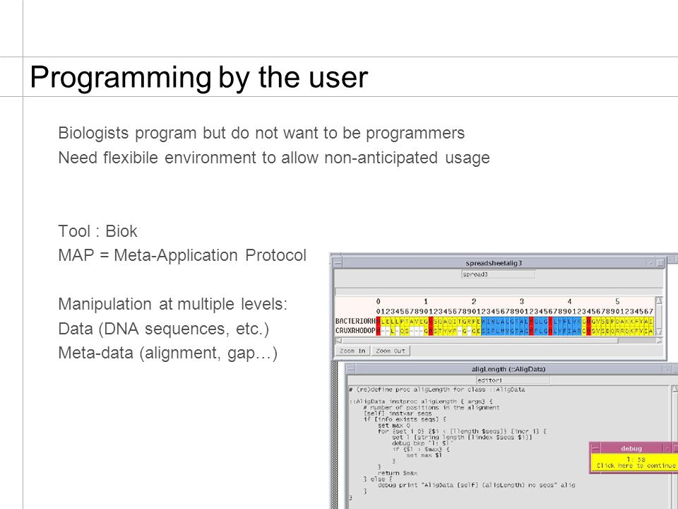 22 Programming by the user Biologists program but do not want to be programmers Need flexibile environment to allow non-anticipated usage Tool : Biok