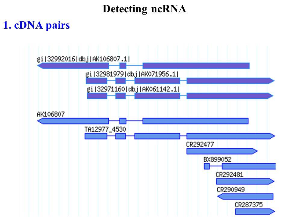 Detecting ncRNA 1. cDNA pairs