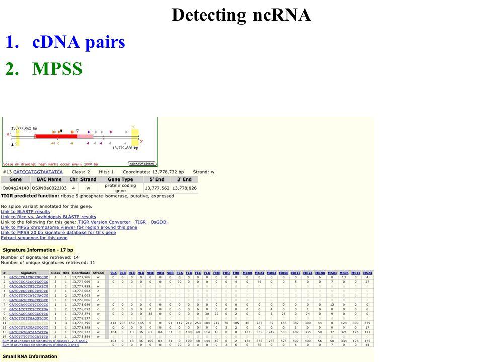Detecting ncRNA 1.cDNA pairs 2.MPSS