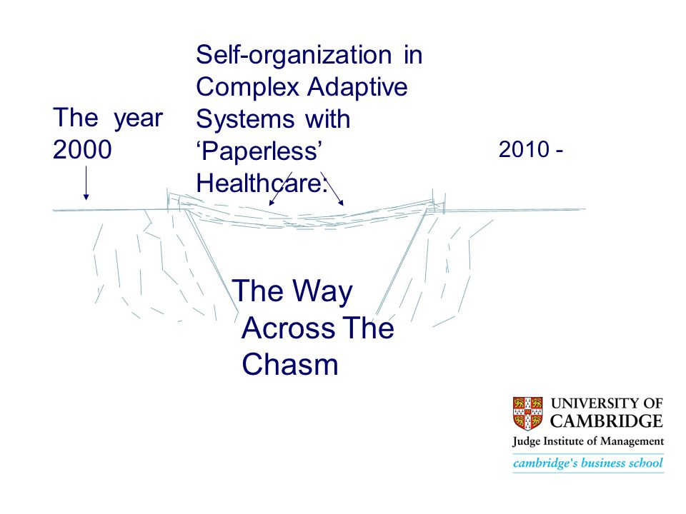 The Way Across The Chasm The year 2000 Self-organization in Complex Adaptive Systems with 'Paperless' Healthcare: 2010 -