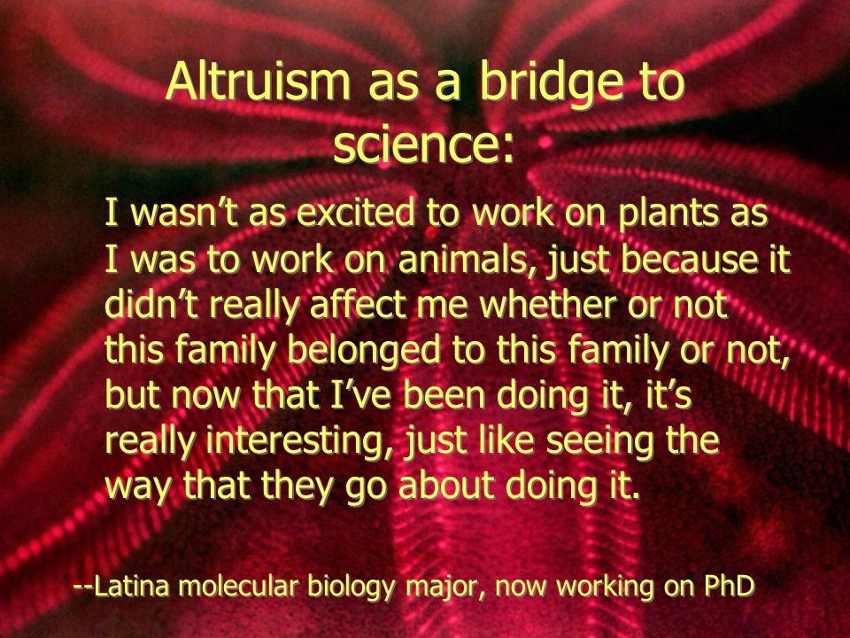 Altruism as a bridge to science: I wasn't as excited to work on plants as I was to work on animals, just because it didn't really affect me whether or not this family belonged to this family or not, but now that I've been doing it, it's really interesting, just like seeing the way that they go about doing it.
