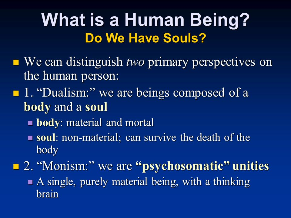 What is a Human Being. Do We Have Souls.