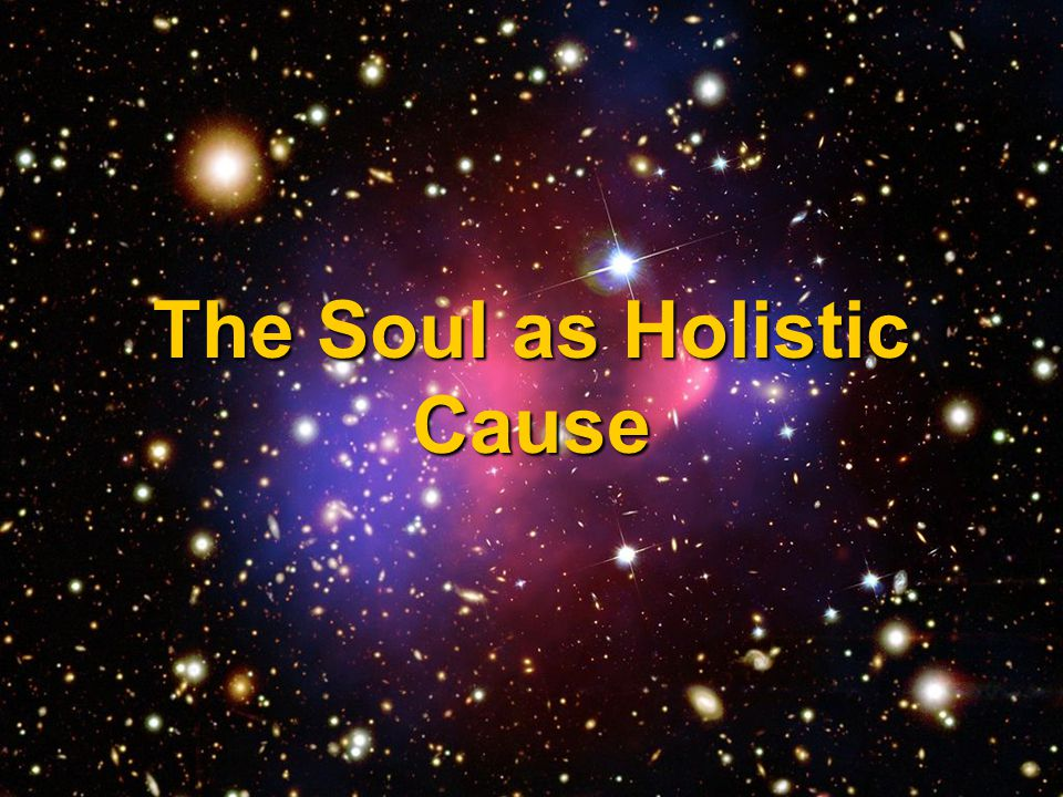 The Soul as Holistic Cause