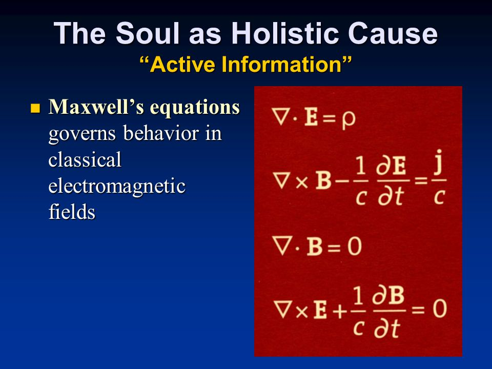The Soul as Holistic Cause Active Information Maxwell's equations governs behavior in classical electromagnetic fields Maxwell's equations governs behavior in classical electromagnetic fields