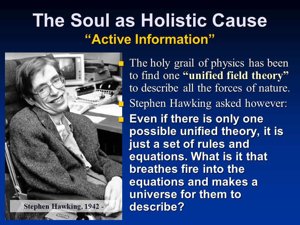 The Soul as Holistic Cause Active Information The holy grail of physics has been to find one unified field theory to describe all the forces of nature.