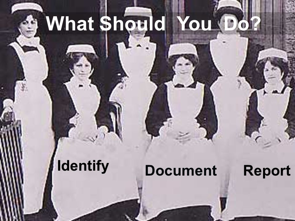 What Should You Do Identify DocumentReport
