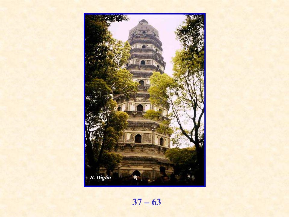 37 – 63 S. Diglio