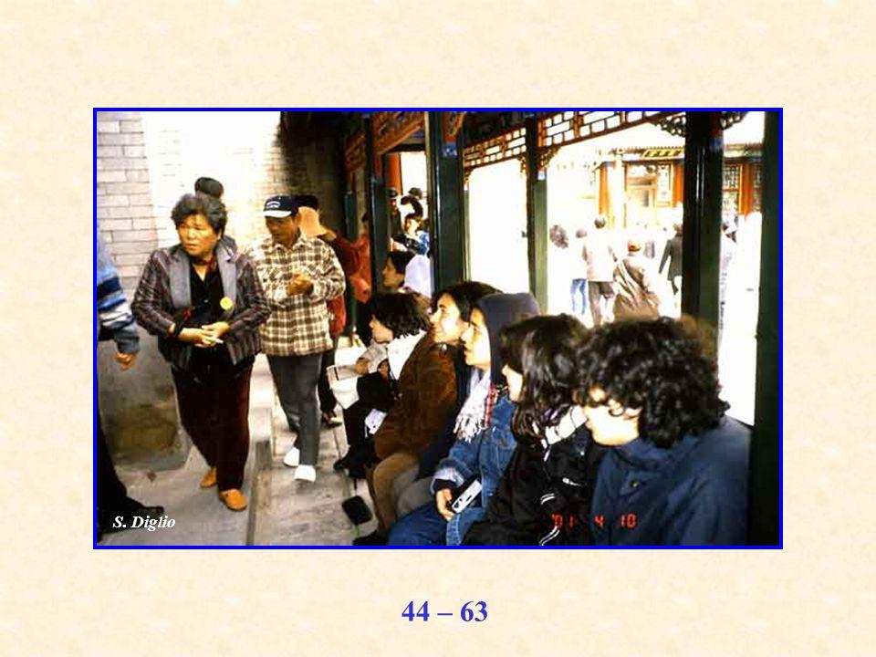 44 – 63 S. Diglio