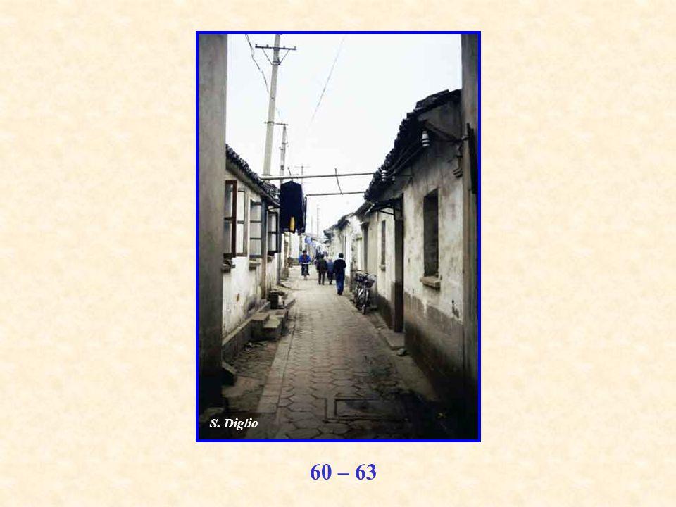 60 – 63 S. Diglio