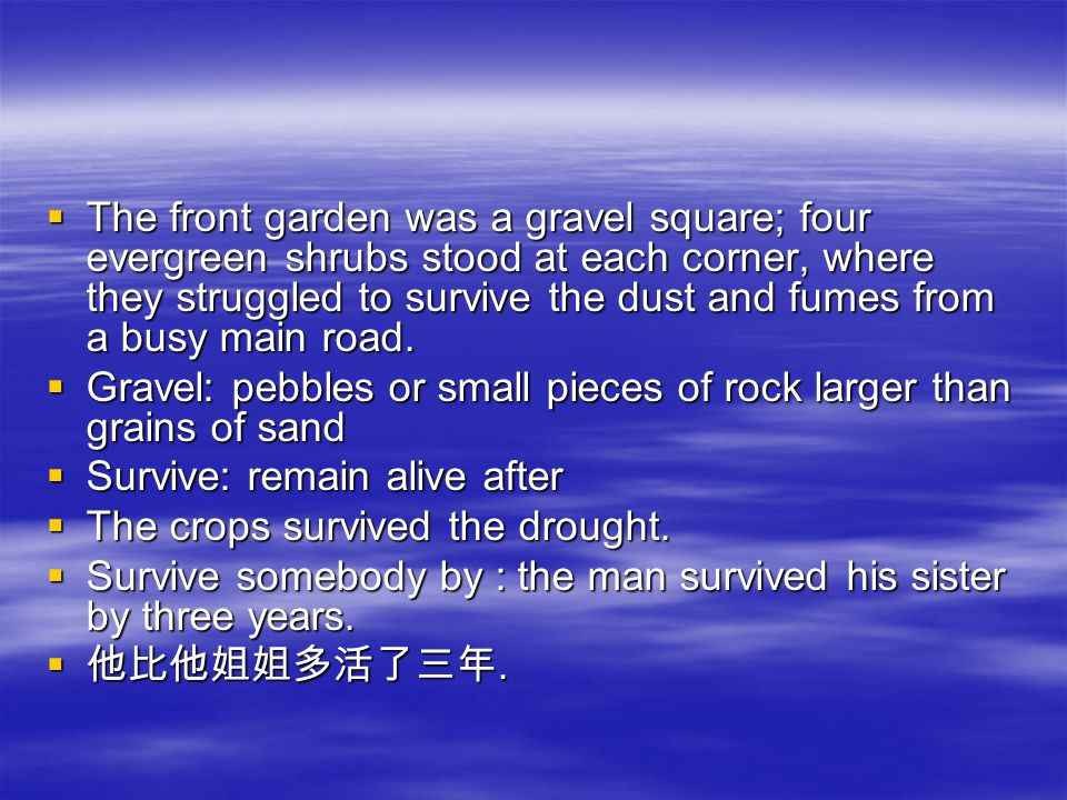 TTTThe front garden was a gravel square; four evergreen shrubs stood at each corner, where they struggled to survive the dust and fumes from a busy main road.