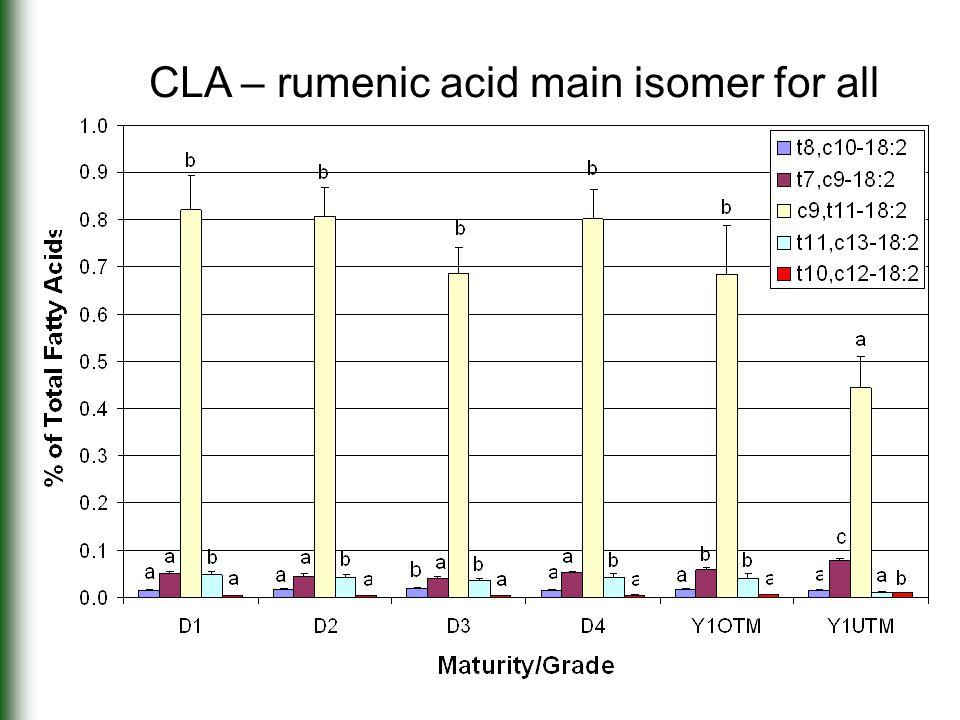 CLA – rumenic acid main isomer for all