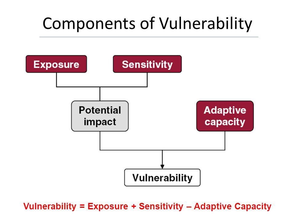 Components of Vulnerability Vulnerability = Exposure + Sensitivity – Adaptive Capacity