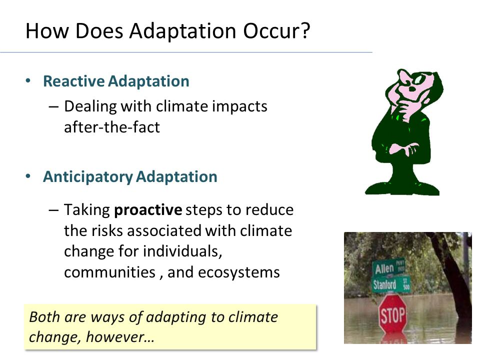 How Does Adaptation Occur.
