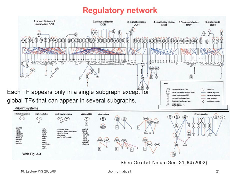 10. Lecture WS 2008/09Bioinformatics III21 Regulatory network Shen-Orr et al.