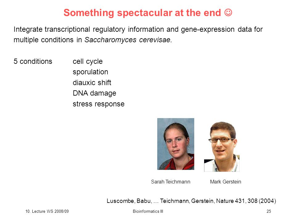 10. Lecture WS 2008/09Bioinformatics III25 Integrate transcriptional regulatory information and gene-expression data for multiple conditions in Saccha