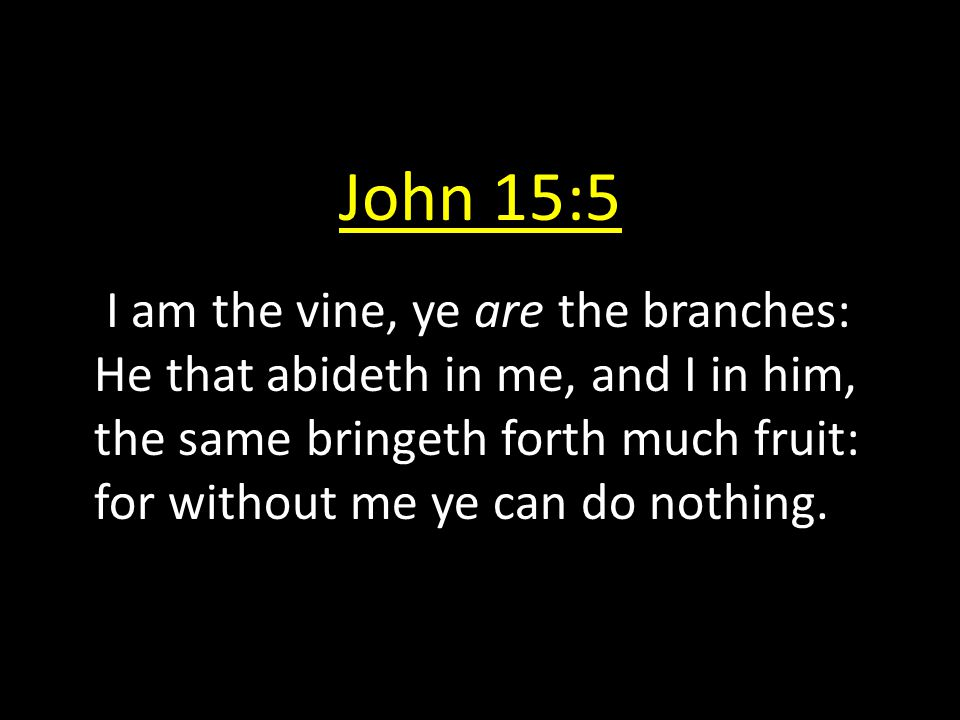 John 15:5 I am the vine, ye are the branches: He that abideth in me, and I in him, the same bringeth forth much fruit: for without me ye can do nothin
