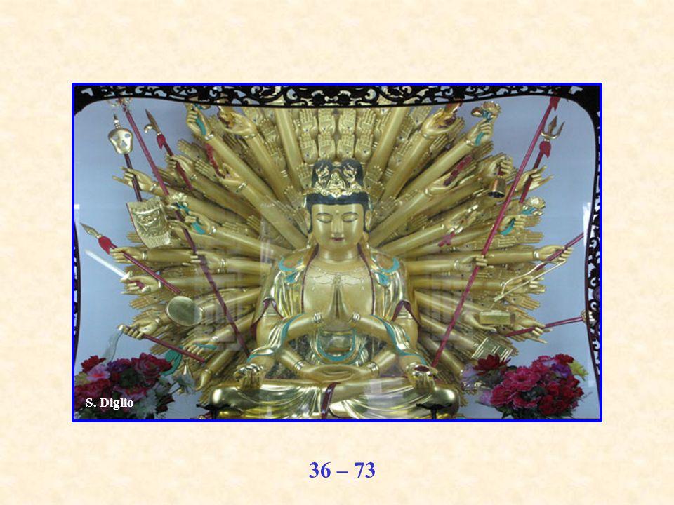 36 – 73 S. Diglio